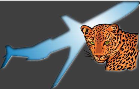 jaguares-logo-shadow